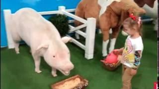 Гладим животных играем на детской площадке в магазине игрушек Kidswill shopping Miss Katy