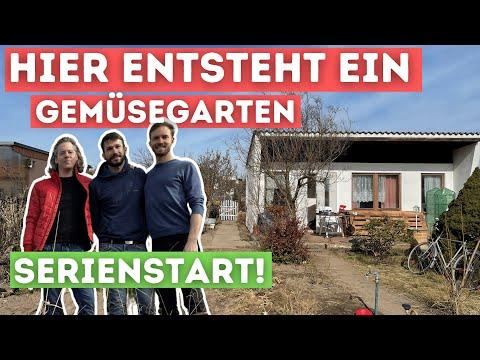 Unser Kleingarten #1: Erste Gartentour durch unseren neuen Kleingarten in Berlin Pankow