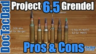 Project 6.5 Grendel - Pros & Cons