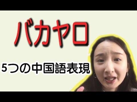 #25「中国語講座 」 「バカ!」の5つの中国語表現を覚えましょう