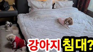 강아지 침대 디스크있는…