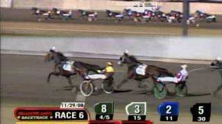 In Focus - Three-Year-Old Colt Trot Breeders Crown Final