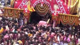 Lorrd Jagannath is coming on the ratha yatra cart.Puri 2013