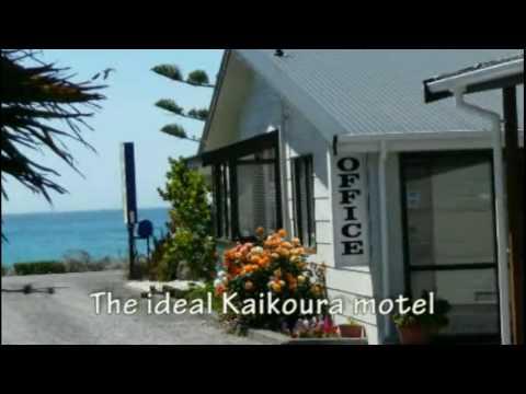 Motels - Sierra Beach Front Motel  - New .Zealand