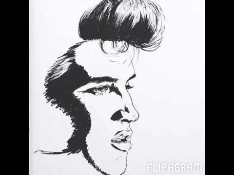 Elvis Presley Portrait   Sharpies