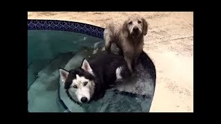 super cooper sunday 11 dirty play time with kya reddit famous