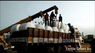 Silage Bales Delivery to Govt. of AP, Department of Animal Husbandry