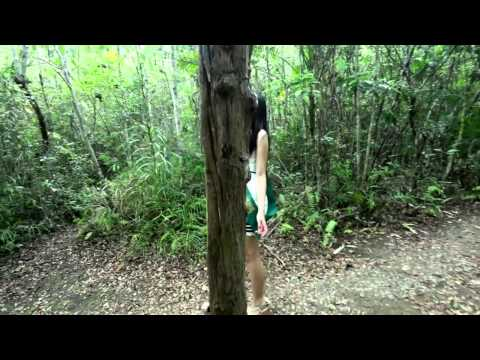 Miss Earth Calape, Bohol 2015 Eco Video