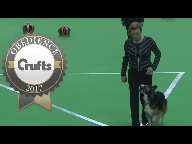 Obedience Championship - Bitches - Part 13 | Crufts 2017