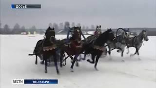 Тройка вологодского конного завода стала победителем чемпионата России