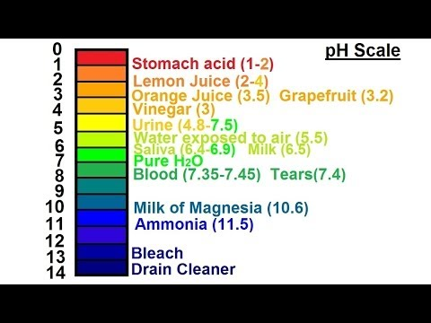 essay chemical reactions ph scale