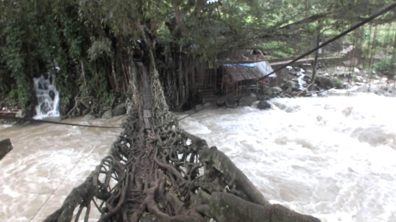 Jembatan Akar Bayang - Wisata Sumatera Barat Pesisir