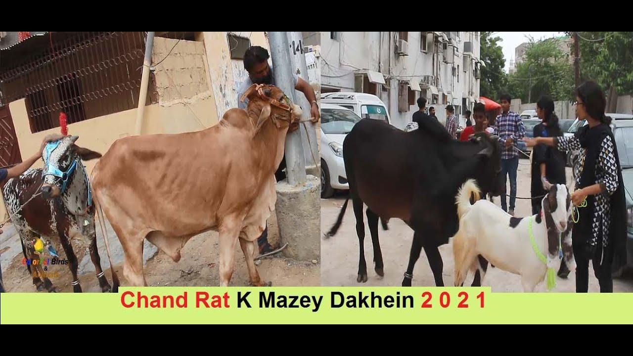 Bakra Eid Ki Chand Rat K Mazey in Karachi 2021