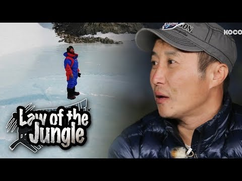 Theres No Law of The Jungle Without ung Man?!  Law of the Jungle Ep 309