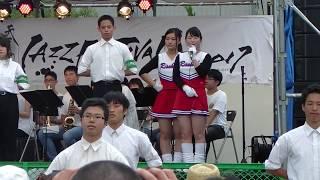 JR総武線錦糸町駅北口近くの錦糸公園で、第8回「すみだストリートジ...