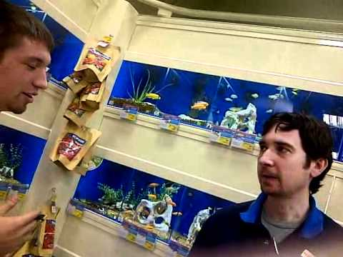 Based Fish Interview pt 1 (very Rare T.O.B)