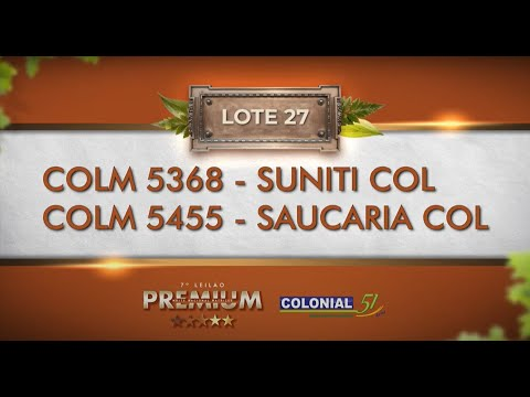 LOTE 27   COLM 5368, 5455
