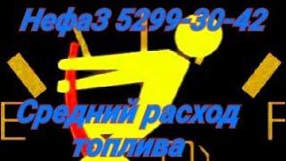 НефаЗ 5299-30-42 #4