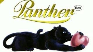 Panther Rex - Goodbye My Love (Album-Version)  Audio