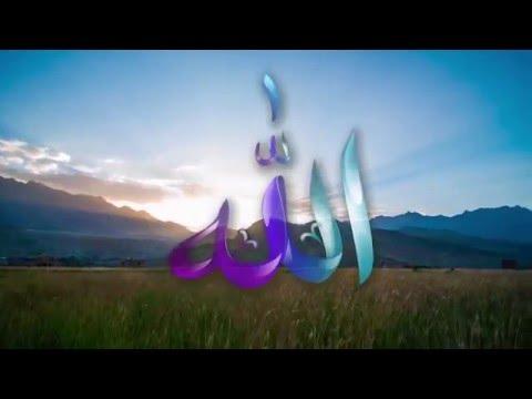 The Journey of Soul Bangla Version Md. Rafiqul Islam