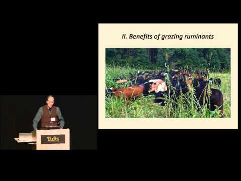 Ridge Shinn - A New Program to Restore Northeast Grasslands: 100% Grass-Fed Beef