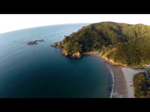 Little Bay Coromandel