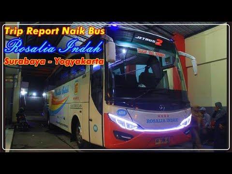 DIAM-DIAM MENGHANYUTKAN!! TRIP REPORT Naik Bus Rosalia Indah, Ada Yang KENA TILANG Polisi