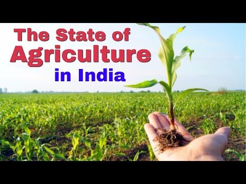 The State of Agriculture in India   OVERVIEW OF AGRICULTURAL SECTOR