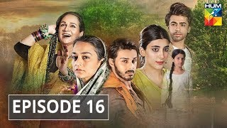 Udaari Episode 16 HUM TV Drama