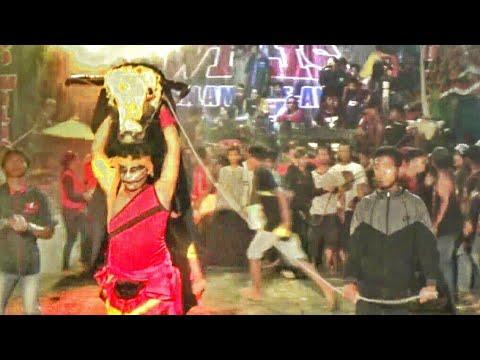 BANTENG TUMANG NGAMUK---NYRUDUK TAK TERKENDALI !!---GANAS !!---SERU !!---Turonggo Wilis Live Jaruman