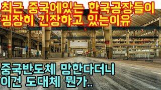 최근-중국에있는-한국공장들이-굉장히-긴장하고-있는이유-중국반도체-망한다더니
