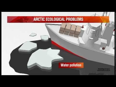 Arctic ecological problems