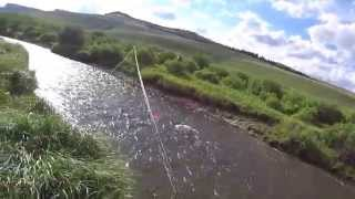 Fly fishing North fork Tongue river for trout Big Horn Mountains