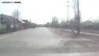 Черная кошка дорогу перебежала