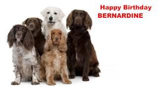 Bernardine - Dogs Perros - Happy Birthday