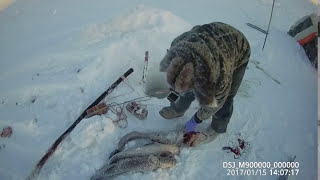 Russia Checking the kiddle from 01-15-17 Yakutia, another angle, eng subs