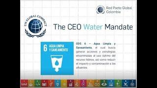 Webinar: ¿Cómo ser parte del CEO Water Mandate y del Water Action Hub?