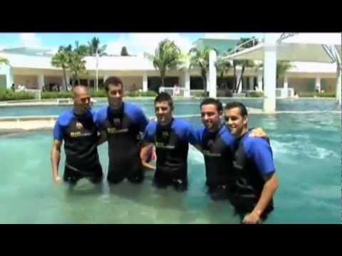 FC Barcelona - Villa, Pedro, Xavi, Busquets & Valdés are swimming with Dolphins, Miami 03.08.2011