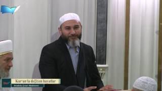 17) [Aile] (Kur'an'la değişen hayatlar) - İdris Polat