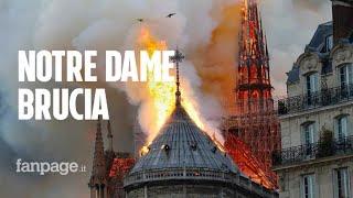 Incendio Notre Dame, lo storico dell'arte Tomaso Montanari: