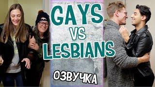 Gays vs Lesbians// ГЕИ vs ЛЕСБИЯНКИ - ОТНОШЕНИЯ