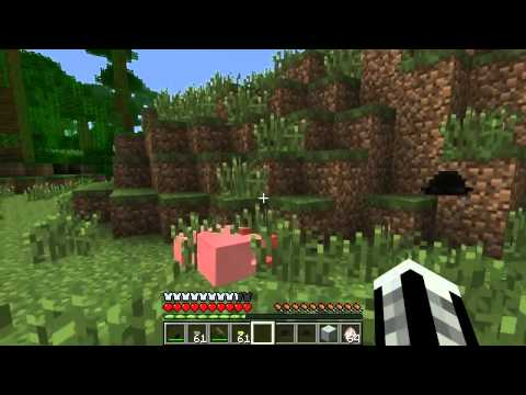 - Игровой сервер Minecraft