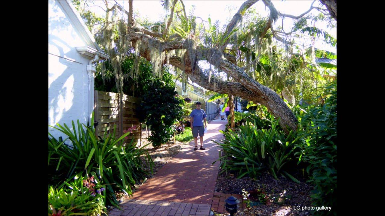 Sarasota Selby Botanical Gardens