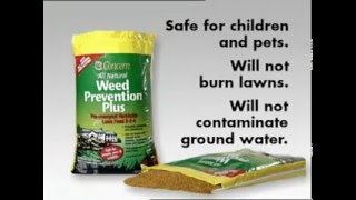 Weed Prevention and How to Get Rid of Weeds