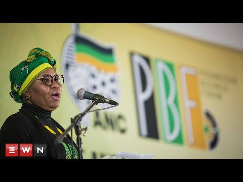 #ANCNPC Lindiwe Zulu addresses small business development in South Africa