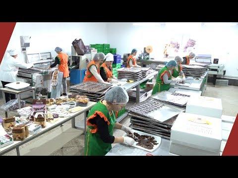 Straight To The Village/ Dried Fruit Food Factory Թիմը գնում է գյուղ. Չորացրած մրգերի արտադրություն