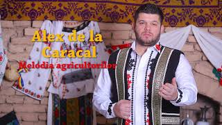 Alex De La Caracal Melodia agricultorilor Live 2018.mp3