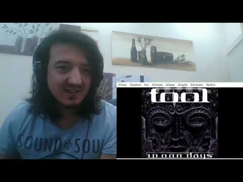 Tool - Vicarious / REACTION !!!