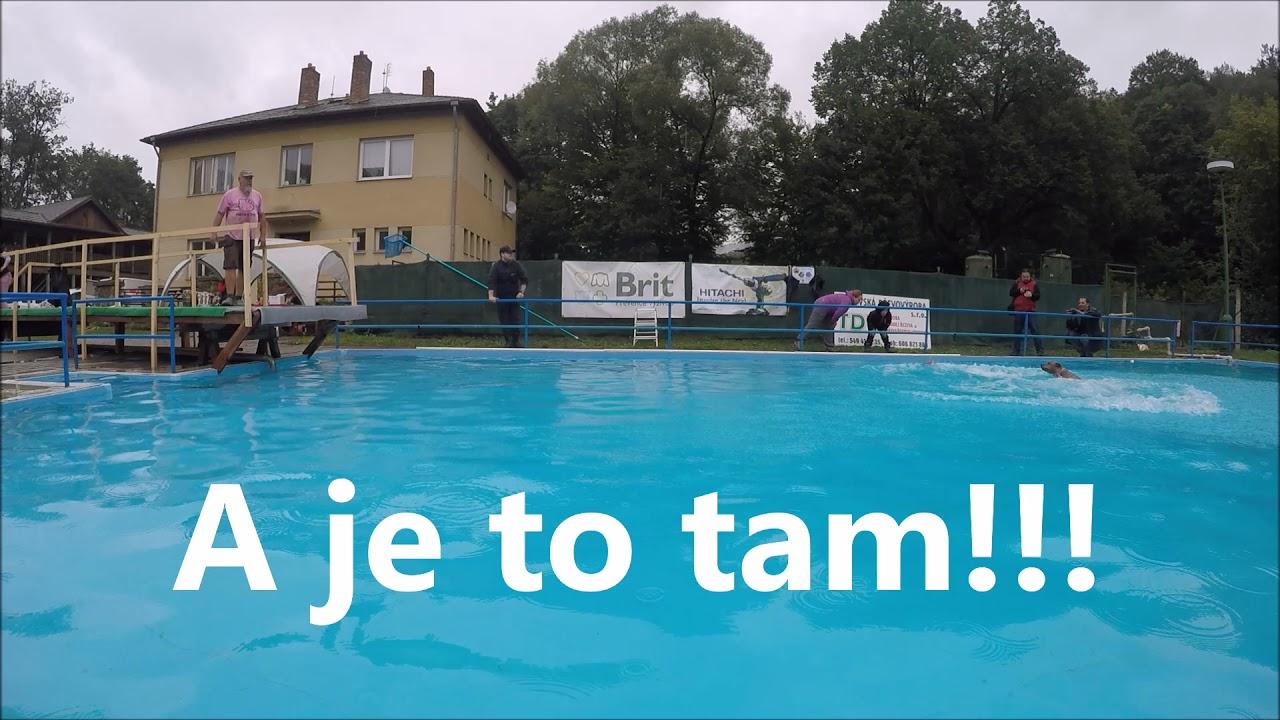 Video Nejdelší psí skok do vody