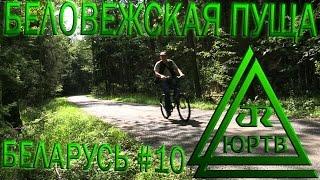 ЮРТВ 2016: Беларусь #10. Беловежская пуща и путь в Барановичи. [№171]